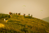 para-gliders paradise