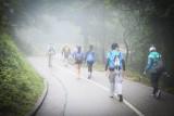 Tai Mo Shan Trail