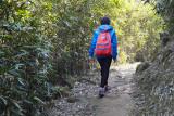beautiful walk.