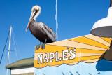 my naples