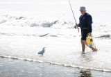 man and seagull