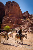 donkeys for those who tire of walking