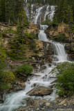 Tangle Falls, Canadian Rockies