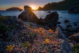 Sunset at Harris Beach