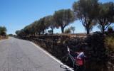 Sicilia centro.jpg