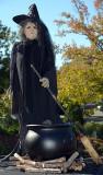 Witch_4492.jpg
