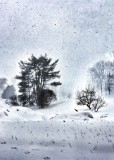 Winter 2016 .jpg