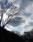 Winter Sky.jpg