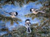 Mésanges d'hiver - Huile 12 x 16