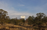 1 of 10 VeryLongBaselineArray antennas from our campsite, PieTown NM