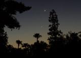 Venus and Jupiter -- August 16, 17, 18, 2014