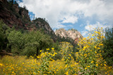 Sedona & Oak Creek