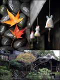 Marshal Zen Garden Snapshots