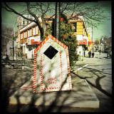 Christmas Detritus _2014