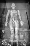 Acupuncture Figurine