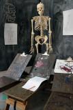 Anatomy Lesson 110