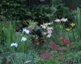 0344 Rock Garden.jpg