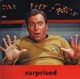 Cpt. Kirk2.jpg