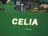Celia - 24 ago 2016 - detalhe.JPG