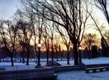 Central Park. batiendo records!