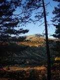 Entre Becerril y Navacerrada