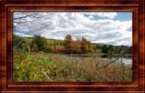 2013 Fall Foliage Vestal, NY RX100M1