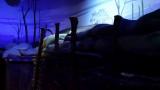 Fort Riley Infantry Museum DSC02674.jpg
