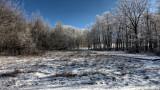 Winter Scene  hdr.jpg