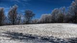 Winter Scene  hdr