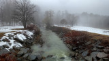Tracy Creek in the Fog 1