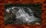 2016 Salt Springs State Park Pennsylvania