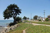 Cliff Drive Santa Cruz