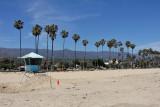 Palms at the Santa Barbara Beach