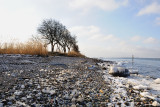 Winther by the sea / Vinter ved havet
