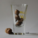 Acorn in glass / Agern i glas
