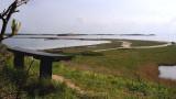 The view / Udsigten