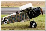 Fokker DVII Albatross from WW1