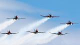 Russian Roolettes Aerobatics Team
