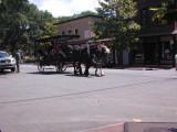 More Of Savannah