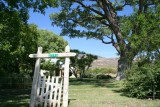 Old homestead in Skull valley AZ