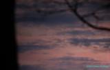 Ice Captured Twilight Colors