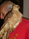 Garrido Shows Us His Bird Collection