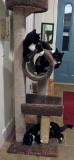 Kitty Tree with Catnip