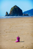 D3X_6002_Cannon Beach.jpg