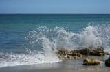 Florida Caribbean Splash