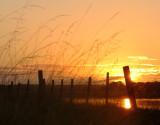 Dawn  on  the  Solway  Coast.