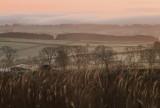 Dawn  over  Dumfriesshire.