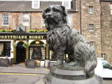 The  statue  of  Greyfriar's  Bobby