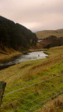 A fly fisherman , waist deep in the River  Clyde , on a freezing  morning.