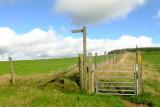 Offa's  Dyke  descending  to the field  gate  .